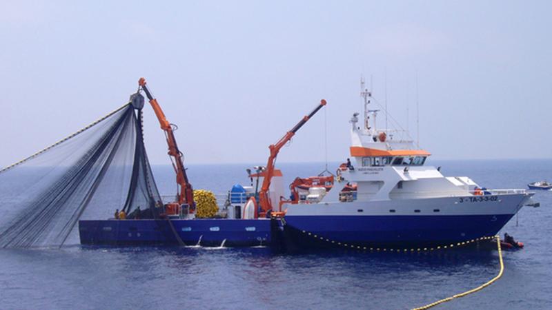 fish-boatss